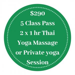 Intrinsic Mind 5 Class Pass Multi