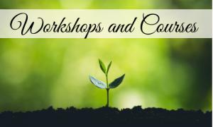 Workshops & Courses