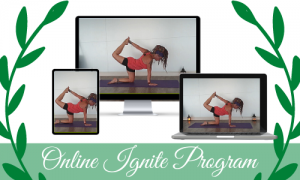 Online Ignite Program