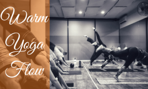 Warm Yoga Flow