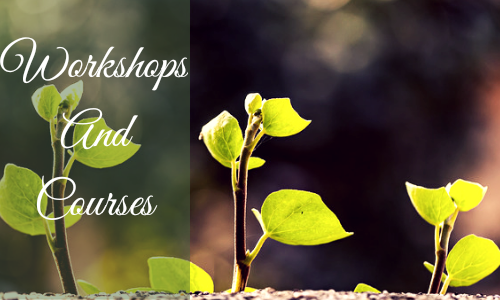 Workshop and courses
