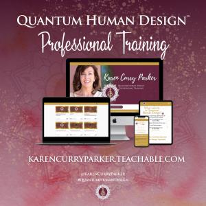 Human Design Pro Training